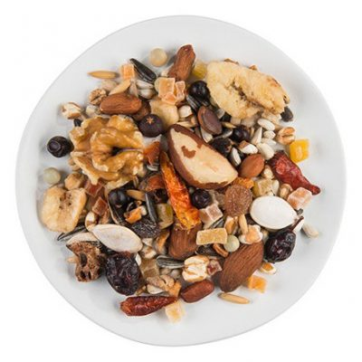 Frutos secos alimento para degus